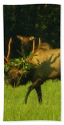 Camoflaged Elk With Shadows Beach Towel