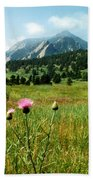 Chautauqua Wildflowers Boulder Beach Towel