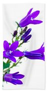 Campanula Flowers Beach Towel