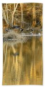 Canada Geese On A Golden Morning Beach Towel