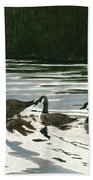 Canadas On Wilson Lake Nc Beach Towel