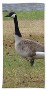 Canadian Goose Strut Beach Towel