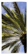 Canary Island Date Palm Beach Towel