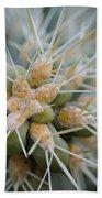 Cane Cholla Cactus Spines Beach Towel