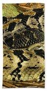 Canebrake Rattlesnake Beach Towel