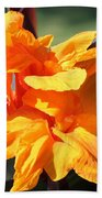 Canna Lily Named Wyoming Beach Towel