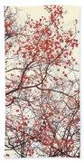 canopy trees II Beach Towel by Priska Wettstein