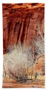 Canyon De Chelly - Spring II Beach Towel