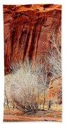 Canyon De Chelly - Spring II Beach Sheet