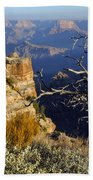 Canyon Foliage Beach Towel