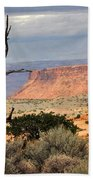 Canyon Vista 2 Beach Towel
