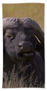 Cape Buffalo   #0574 Beach Towel