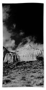 Capital Reef National Park In Black And White  Beach Towel