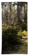 Capitol Forest Logging Road Beach Towel