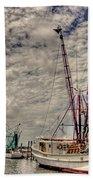 Captain Phillips Beach Towel by Benanne Stiens