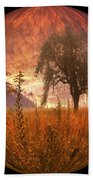 Captured Flame Beach Towel