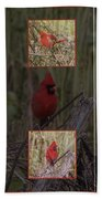 Cardinal Family Beach Towel