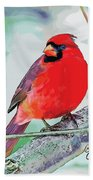 Cardinal In Ice Tree Beach Towel