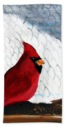 Cardinal In The Dogpound Beach Towel