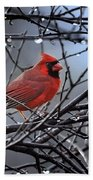 Cardinal In The Rain   Beach Towel