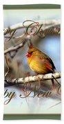 Cardinal - Lady At Christmas Beach Towel