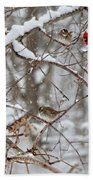 Cardinal Meeting In The Snow Beach Towel