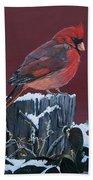 Cardinal Winter Songbird Beach Towel