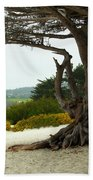 Carmel California Beach Beach Towel