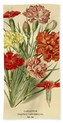 Carnations Beach Towel by Philip Ralley