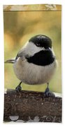 Carolina Chickadee With Decorative Frame IIi Beach Towel
