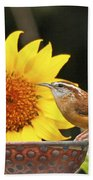 Carolina Wren And Sunflowers Beach Towel