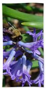 Carpenter On Hyacinth Beach Towel
