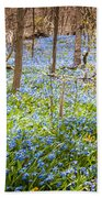 Carpet Of Blue Flowers In Spring Forest Beach Towel by Elena Elisseeva