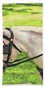 Carriage Pony Beach Towel