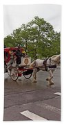Carriage Ride In Central Park Beach Towel