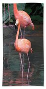 Cartoon - A Flamingo In The Small Lake In Their Exhibit In The Jurong Bird Park Beach Towel
