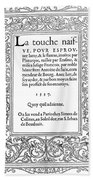 Cartouches, 1537 Beach Sheet