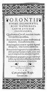 Cartouches, 1544 Beach Sheet