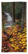 Cascade Creek  Autumn Beach Towel