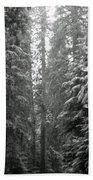 Cascade Snow Beach Towel