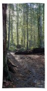 Cascades Forest Path Beach Towel