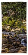 Cascading Creek Beach Towel
