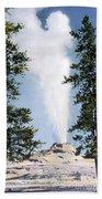 Castle Geyser Yellowstone Np Beach Towel