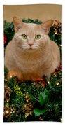 Cat And Christmas Wreath Beach Towel