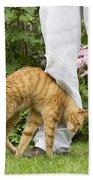 Cat Brushing Against Legs Beach Towel