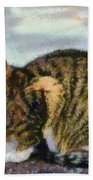 Cat By The Seaside Beach Towel