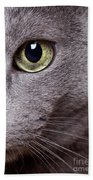 Cat Eye Beach Towel