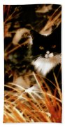 Cat In The Golden Grass Beach Towel
