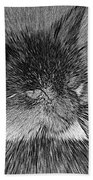 Cat - India Ink Effect Beach Towel
