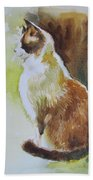 White And Brown Cat Beach Towel